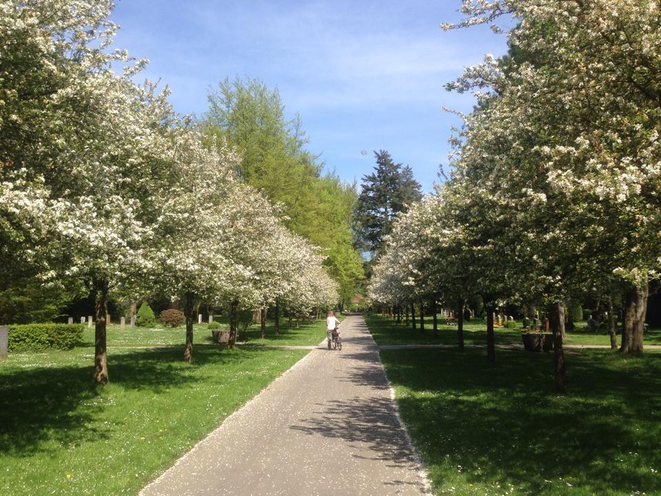 Friedhof Ohlsdorf_2014_Tagestipp